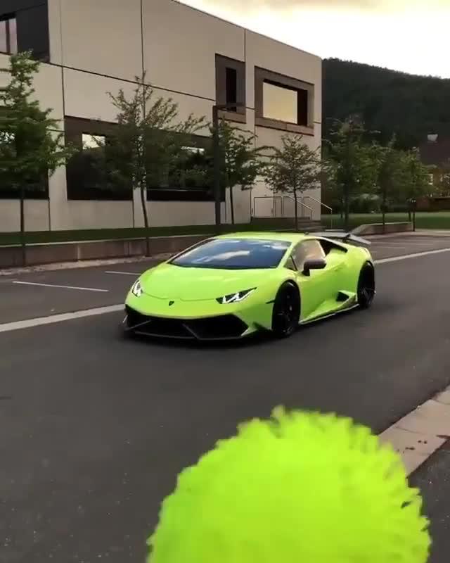Nếu như có 1 ngày chú cún cưng của bạn hóa thành Lamborghini thì sẽ thế nào?