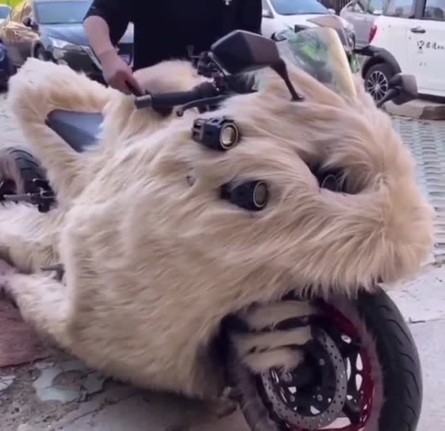 Đây hẳn là chiếc mô tô dành cho những người yêu thích sự mềm mại