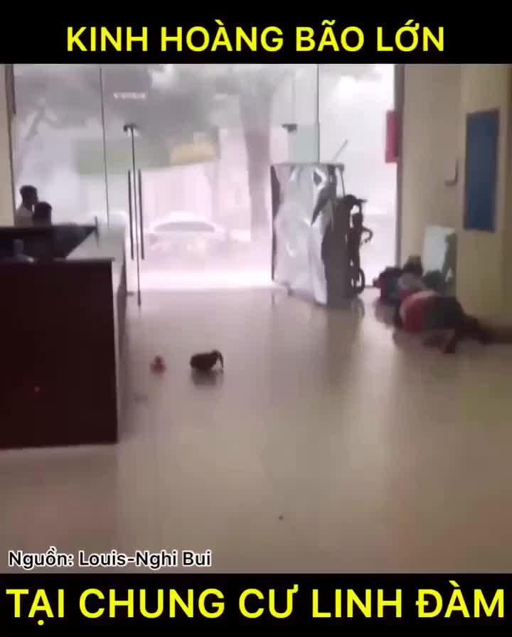 Mưa giông bất ngờ đổ ập, người dân chung cư bị kéo bật khỏi cửa, cây gãy đè trúng ô tô ở hà nội