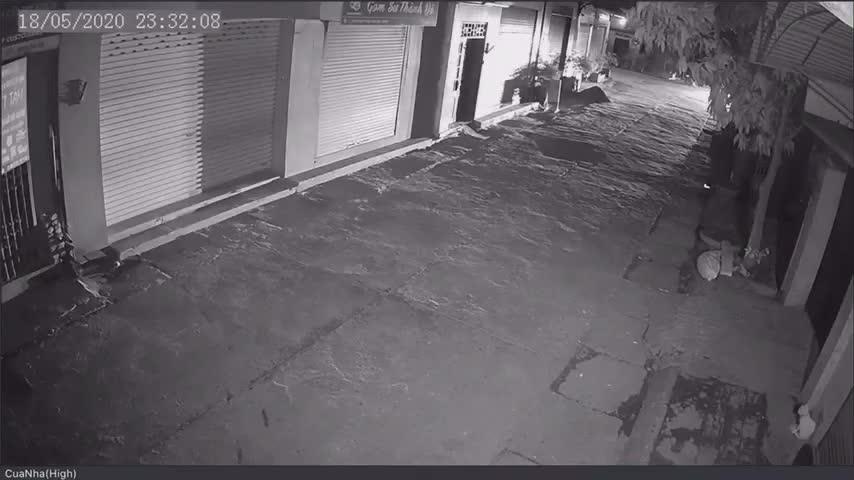Nhóm người chạy xe Mercedes đi câu trộm mèo