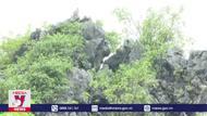 Nguy cơ lở núi, Ninh Bình di dời khẩn cấp các hộ dân