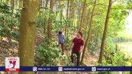 Phát huy vai trò nòng cốt trong bảo vệ rừng ở Điện Biên