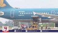 Vietnam Airlines cung ứng hơn 2 triệu chỗ dịp Tết Tân Sửu