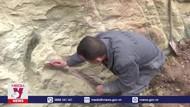 Tìm thấy hóa thạch khủng long khổng lồ