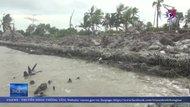 Cà Mau ban bố tình huống khẩn cấp sạt lở đê biển Tây