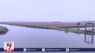 Hà Nam lấy đủ nước hơn 75% diện tích vụ đông xuân