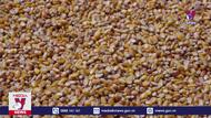 Điều tra tàu vận chuyển Bắp hạt có dấu hiệu trộm cắp tài sản