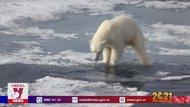 Facebook chặn fake news về vấn đề khí hậu