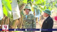 Hợp tác xã hỗ trợ nông dân tìm đầu ra cho sản phẩm
