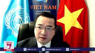 Việt Nam ủng hộ giải pháp toàn diện cho Libya