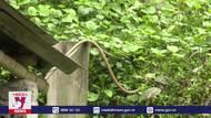 Nhiều công trình nước sạch xuống cấp tại vùng cao Lang Chánh