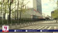 Mốc son mới trong nền ngoại giao Việt Nam