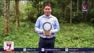 """Nhà bảo tồn Việt Nam đầu tiên nhận giải thưởng """"Nobel Xanh"""""""