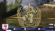 WHO cảnh báo về nạn đội giá và làm giả vaccine ngừa COVID-19
