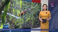 Lâm Đồng: Xe khách lao xuống vực, 15 người hy hữu thoát nạn