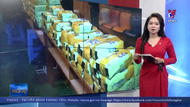 Biên phòng Lạng Sơn bắt vụ vận chuyển hàng trăm kg ma túy đá