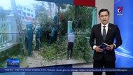 Đà Lạt di dời khẩn cấp 3 hộ dân do sạt lở taluy