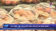 Vải thiều Việt Nam bắt đầu lên kệ tại Nhật Bản