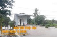 Đắk Lắk: Mưa lớn thiệt hại hàng ngàn tỉ đồng
