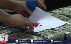 Công an Lào Cai thu giữ 250.000 viên ma túy tổng hợp