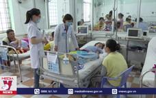 Bệnh sốt xuất huyết tăng mạnh ở Bình Định