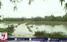 Nhà an toàn vượt lũ vùng hạ lưu sông Thu Bồn