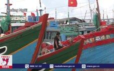 Huyện đảo Lý Sơn cấp tốc ứng phó bão số 9