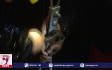 Điện lực Quảng Ngãi nỗ lực khôi phục lưới điện sau bão