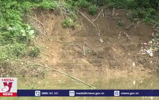 Sạt lở nghiêm trọng tuyến đê tả sông Bưởi