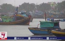 Tàu thuyền Bình Thuận an toàn trước bão số 12