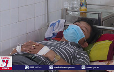 Nguy cơ bùng phát dịch sốt xuất huyết tại Đà Nẵng