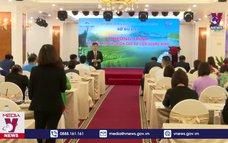 Hợp tác kích cầu du lịch Quảng Ninh - Vĩnh Phúc