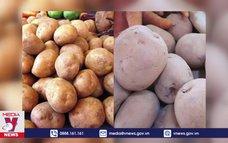 Giúp người tiêu dùng nhận biết nông sản Trung Quốc và nội địa