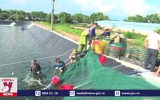 Quảng Ninh ứng dụng công nghệ trong nuôi trồng thủy sản