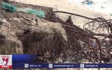 Sạt lở bờ biển nghiêm trọng tại Bình Thuận