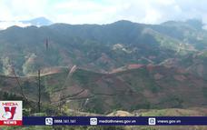 Tăng diện tích nhưng chất lượng rừng suy giảm