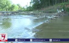 Bình Định khôi phục sản xuất sau mưa lũ