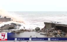 Cần sớm nâng cấp hệ thống kè biển tại Nam Định