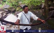 Campuchia tăng nguồn thu từ du lịch sinh thái