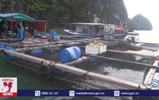 Xây dựng thành trì lòng dân trên tuyến biên giới biển đảo