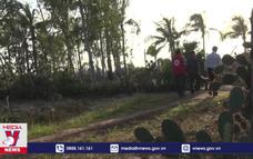Người dân Bình Định ổn định cuộc sống sau bão
