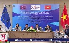 Năm đặc biệt nâng tầm quan hệ Việt Nam – EU