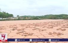 Nhiều diện tích đất nông nghiệp của Quảng Bình bị bồi lấp