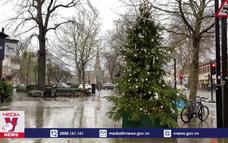 London (Anh) đón mùa Giáng sinh thầm lặng