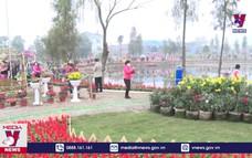 Hưng Yên tổ chức lễ hội hoa Xuân Quan