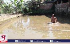 Cuộc sống người dân đảo lộn vì ô nhiễm nguồn nước