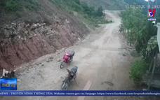 """""""Lâm tặc"""" ngang nhiên phá rừng phòng hộ ở Quảng Ngãi"""
