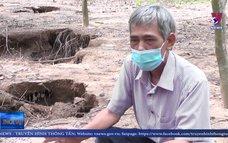 Sụt lún đất bất thường ở xã Triệu Thuận, Triệu Phong, Quảng Trị