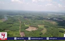 Tháng 11 hoàn thành kiểm đếm đất Sân bay Long Thành