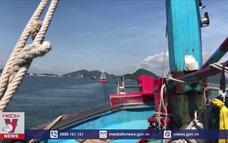 Tàu cá hỏng máy được lai dắt vào bờ